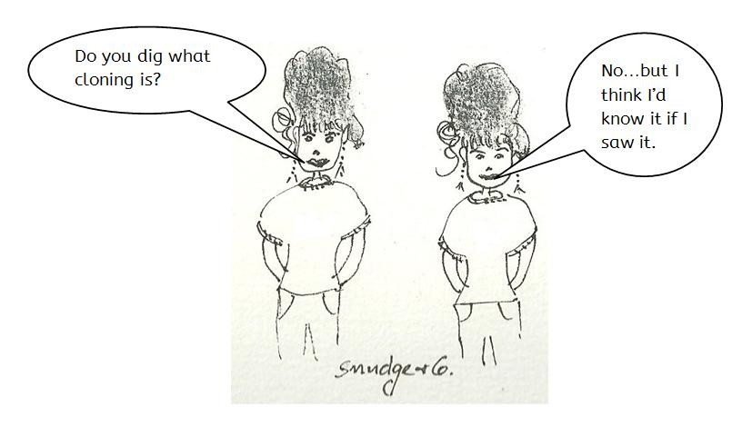 Twins cartoon from https://3toemmaus.com cartoons